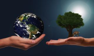 A importância do desenvolvimento sustentável no Brasil